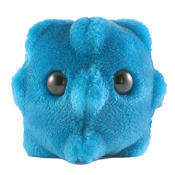 Common Cold (Rhinovirus) Gigantic Doll