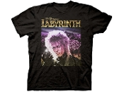 LABYRINTH CRYSTAL BALL JARETH